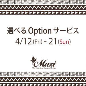 Maxi 選べるオプションサービス