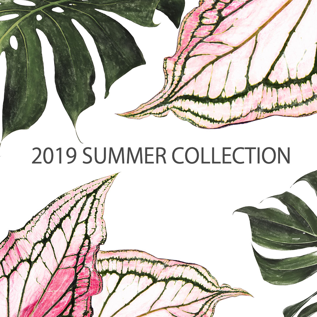 2019summer_collection