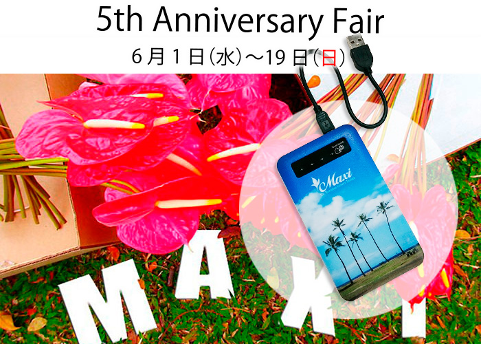 5th Anniversary Fair